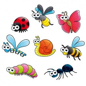 Op ontdekking in de wereld van de kriebelbeestjes